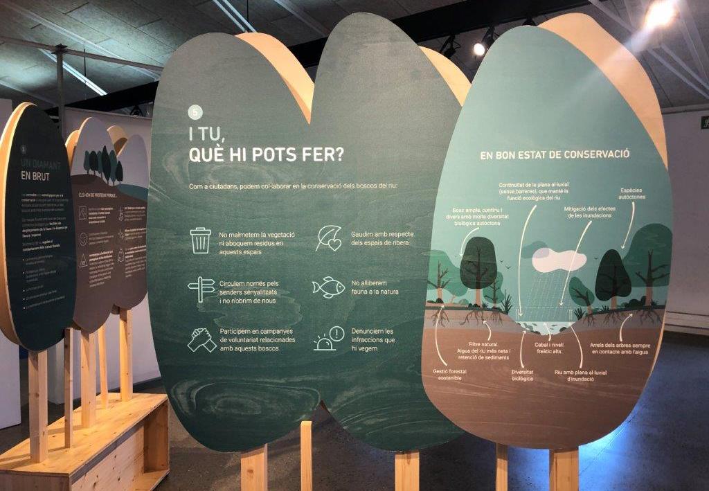 Museudelter_els_boscos_de_riu (1)