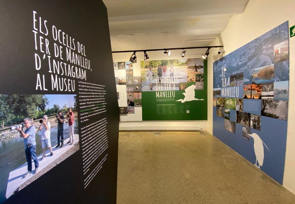 Museudelter_exposició_ocellots_del_ter (6)
